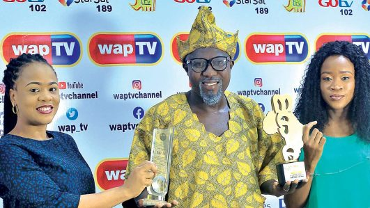 WapTV bag two awards